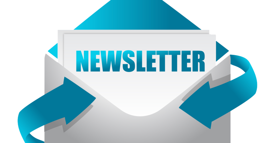 Wordpress plugin newsletter