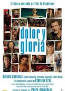 DOLOR Y GLORIA - V.O.S.